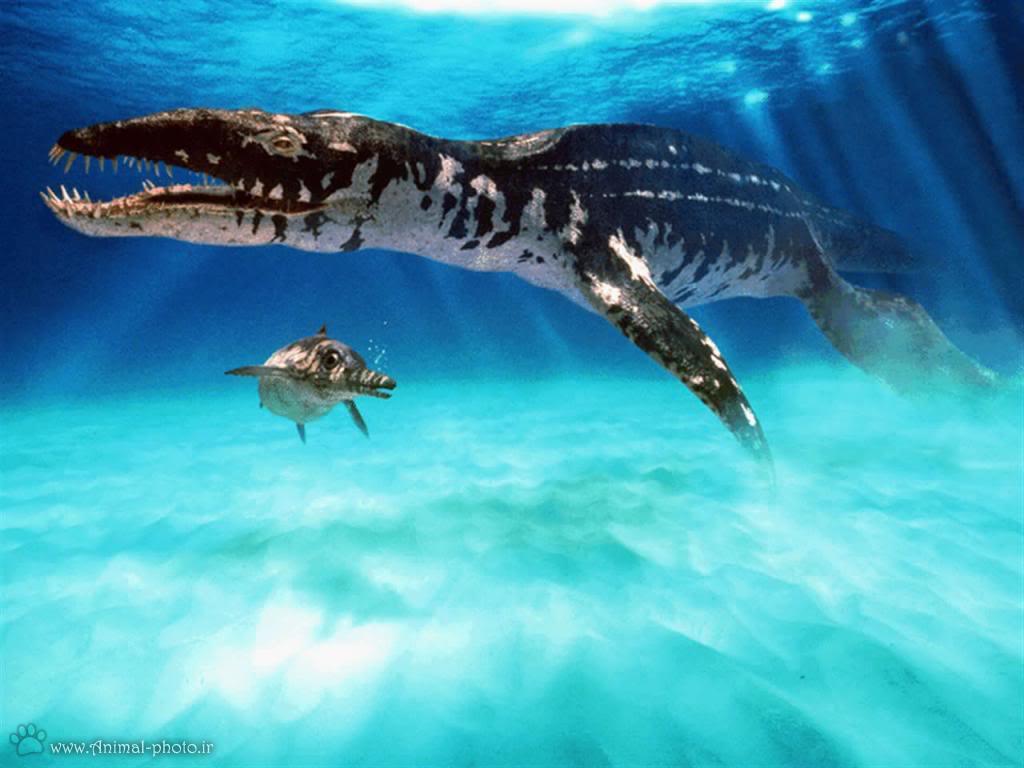 عکس دایناسور های ماهی