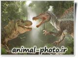 دایناسورهای گوشتخوار