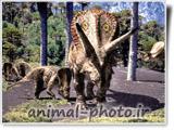 عکس دایناسور ها
